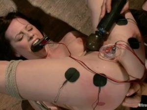Princess Donna Lindy Lane Wired Pussy